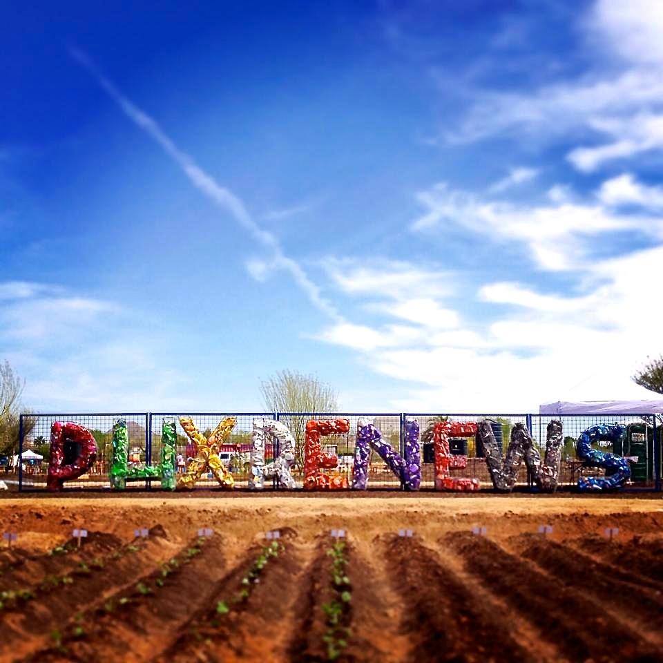 Litter Letter Project in Phoenix, Arizona