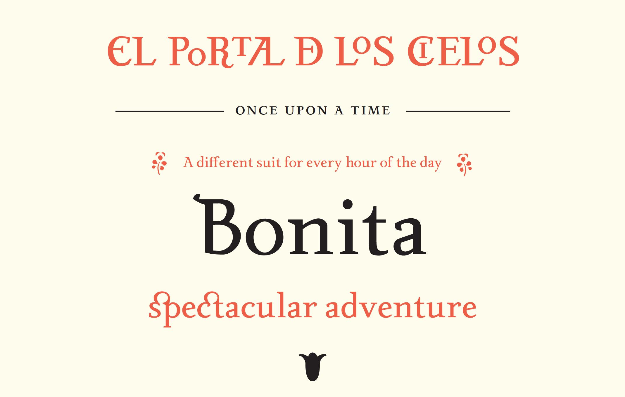 Laura Rossi Garcia's Irene Typeface