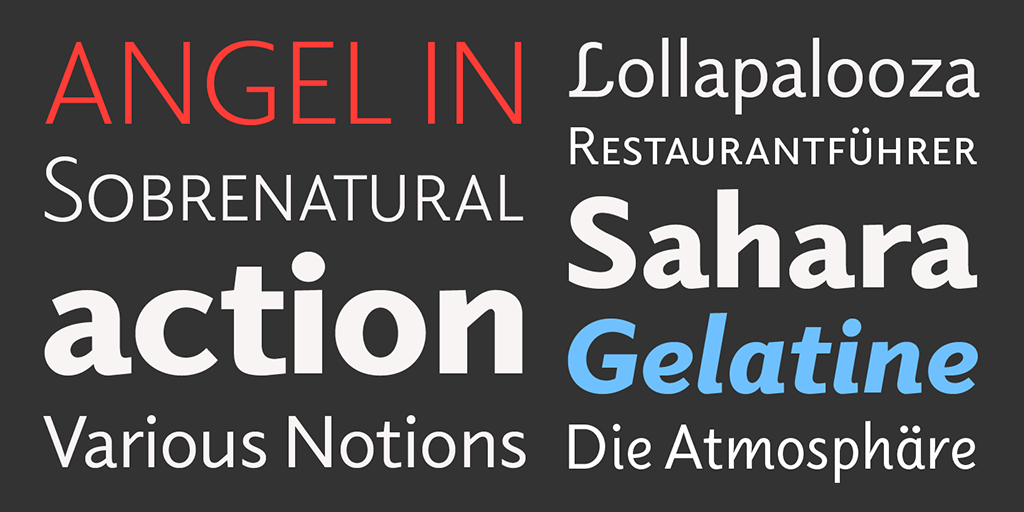 Sibylle Hagmann's rugged Elido family of typefaces.