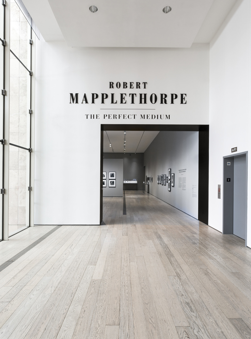 Title wall for Robert Mapplethorpe: The Perfect Medium, LACMA, 2016, photo © Museum Associates/LACMA